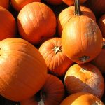 Grim's Orchard Fall Festival will have pumpkins